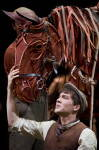 AUST PROD WAR HORSE - Joey & Albert close up