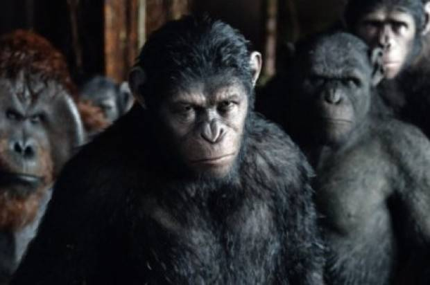 Film Review of 'Dawn of the planet of the apes'