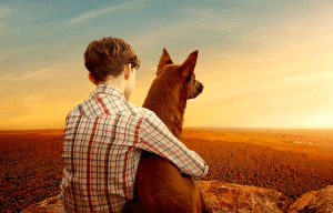 AUSTRALIA'S FAVOURITE DOG IS BACK IN 'RED DOG: TRUE BLUE'