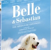 belle-and-sebastian-2_dvd_3d