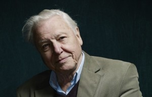 SIR DAVID ATTENBOROUGH RETURNS TO AUSTRALIA AND NEW ZEALAND