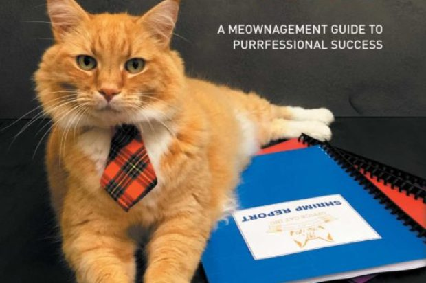 Book Reviews :How To Get Ahead In Business With Office Cat