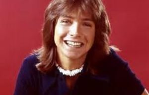 POP IDOL DAVID CASSIDY DIES AT 67