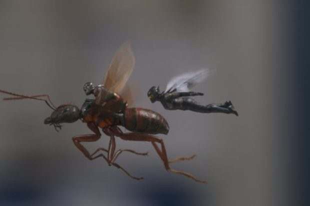 Film Review : Ant-Man and The Wasp