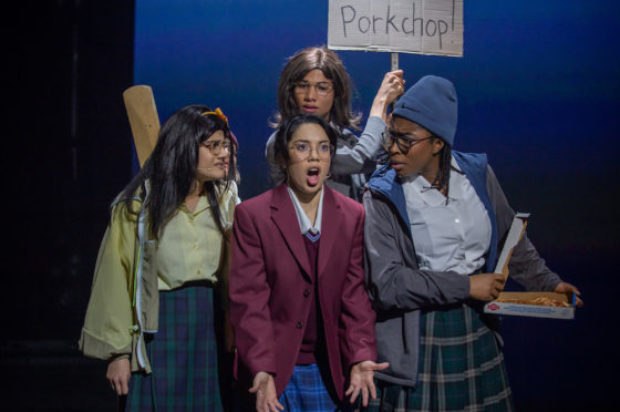THEATRE REVIEW… FANGIRLS MUST GO SHOW
