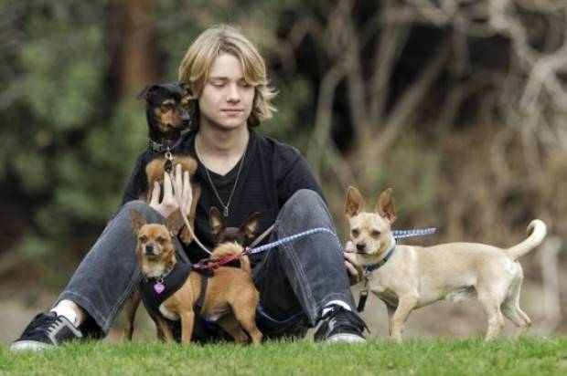 Lou Wegner  Up Coming Teen Actor To Star Cinderella Chronicles Saga