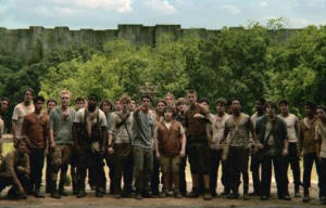 Film Review of 'THE MAZE RUNNER'