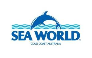 SEA WORLD WELCOMES NEXT GENERATION OF GENTOO PENGUINS