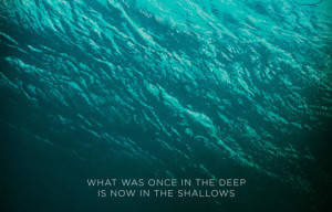 BEWARE OF 'THE SHALLOWS'