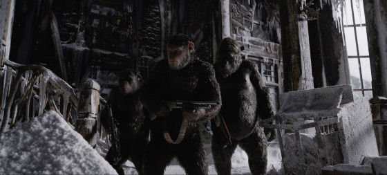 IN WAR PLANET OF APES