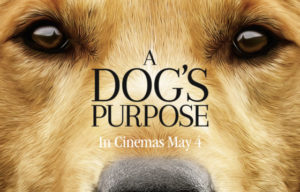 Give Away Ten Doubles  To See : A DOG'S PURPOSE