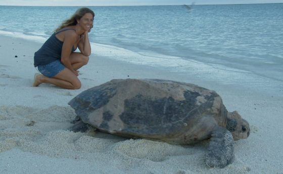 Reduce plastic pollution this World Sea Turtle Day